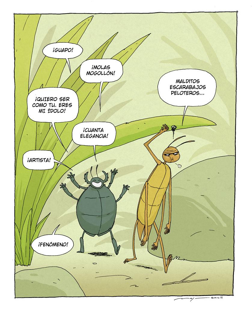 Escarabajo pelotero pelota