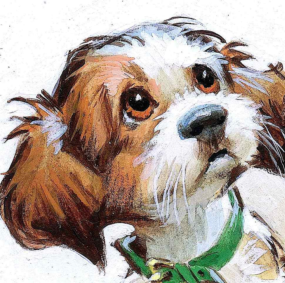 a Pete Hawley illustration of a cute dog's face close up