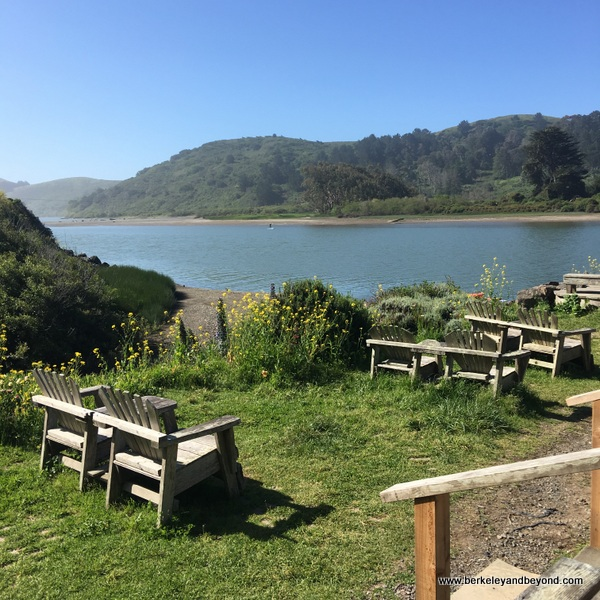 outdoor seating with Russian River view at Cafe Aquatica in Jenner, California