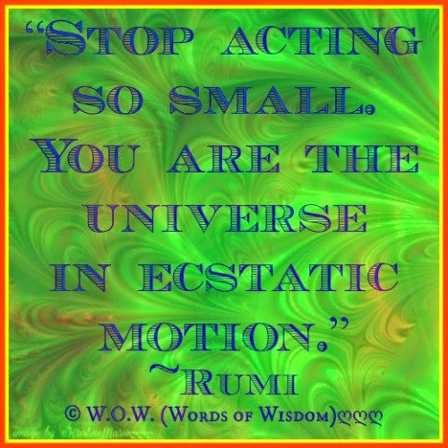Stop Acting So Small You Are The Universe In Ecstatic Motion Quotes