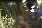Polsek Batukliang Identifikasi Mayat Perempuan Tua Meninggal di Sawah