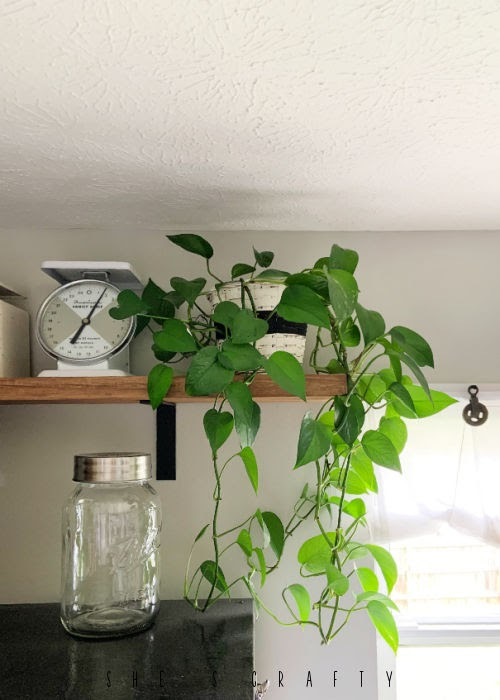 Painted basket to hold pothos potted house plants.