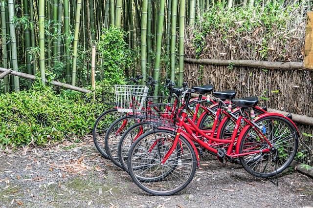 Bicicletas en Kioto