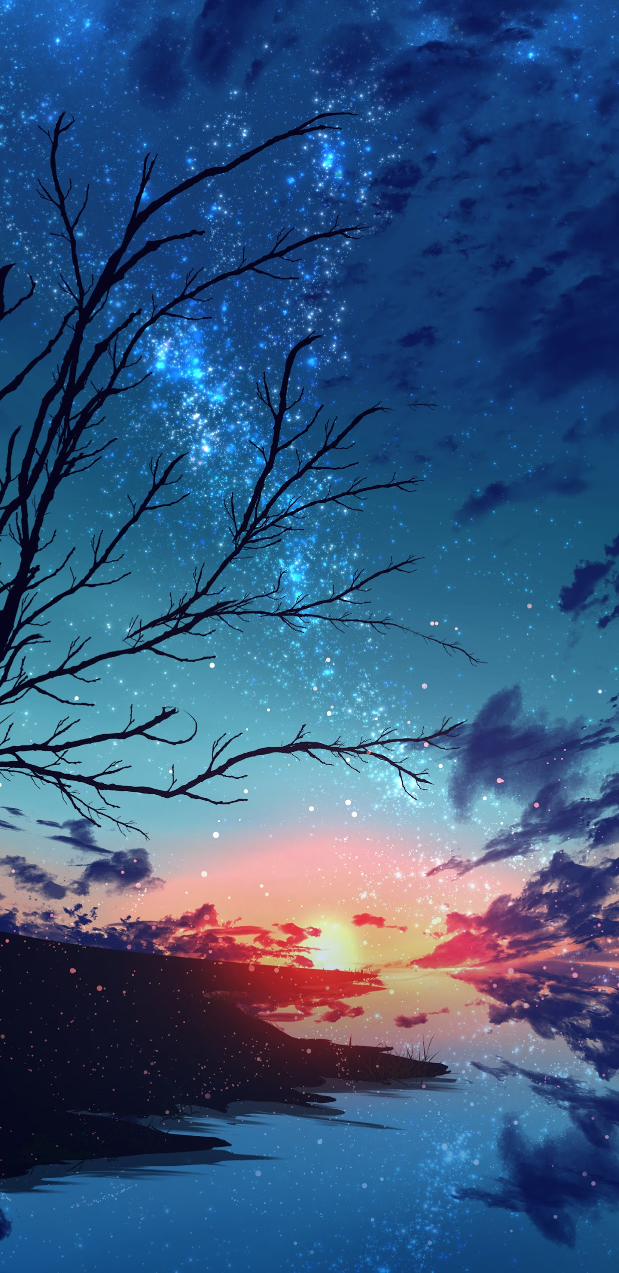 Sunset in the starry sky