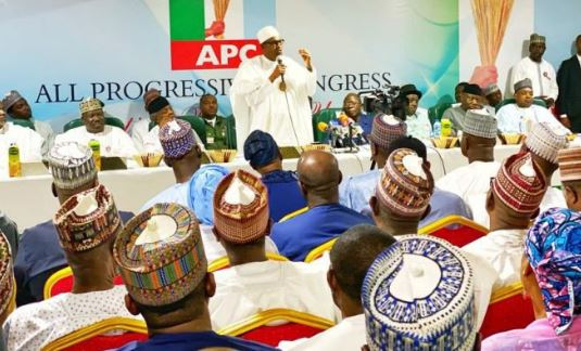 I won't make the mistake of attempting a third term – President Buhari