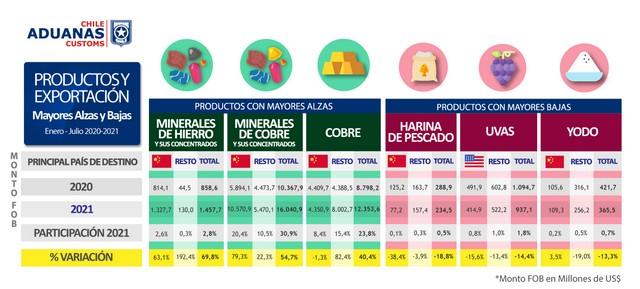 Gráfico 4. Productos y exportación.