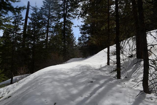 Arcadia Trail under a bit of snow