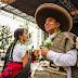 Vive Oaxaca | Sitio oficial