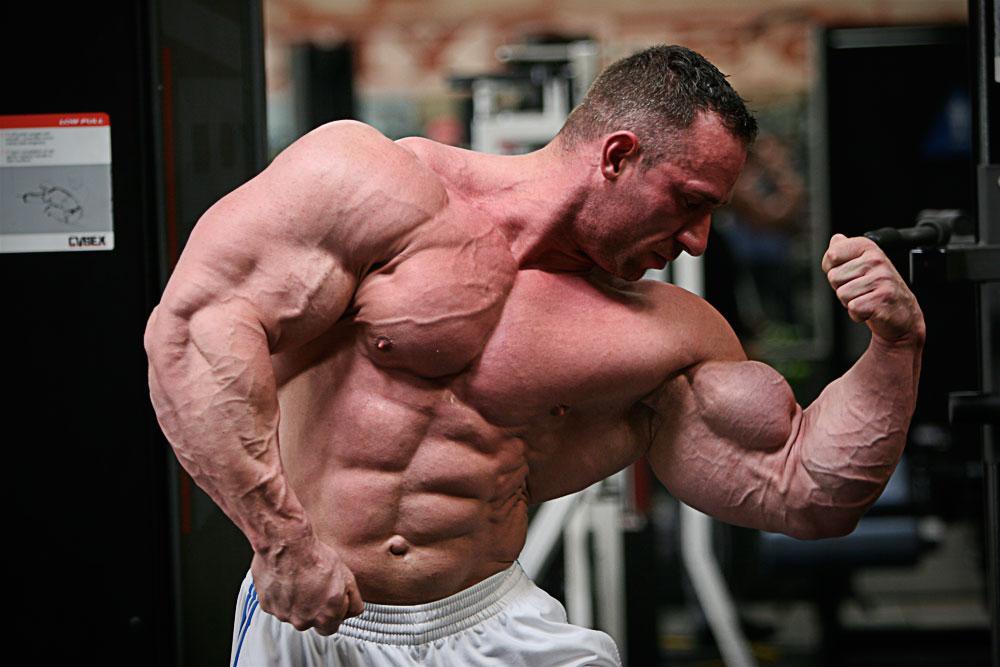 этой статье картинки большие мышцы растительности может