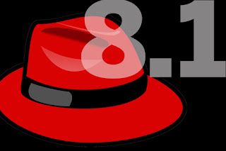 Red Hat Enterprise Linux 8.1 Installation with Screenshots