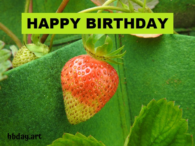 Birthday card with picture of strawberry