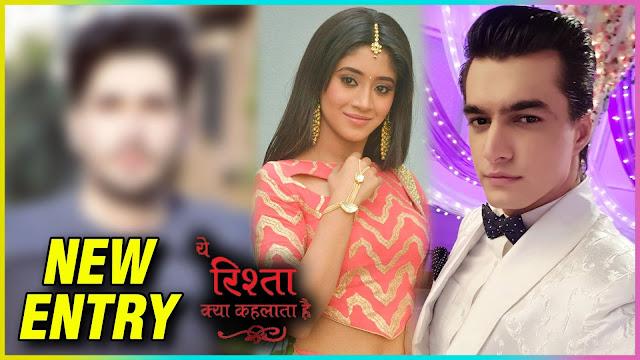 Future Story :  Not Kartik but Rishabh turns Naira's Valentine date in YRKKH