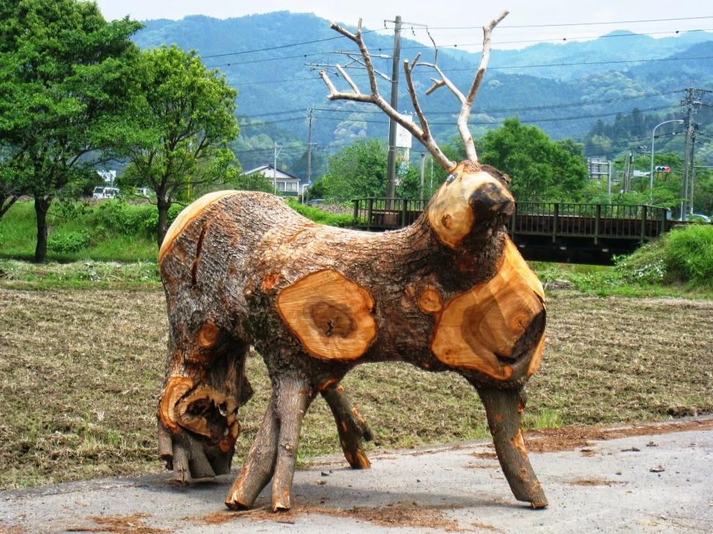 Life In Rural Japan