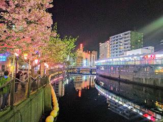 川沿い左手に夜桜、右手にネオン街