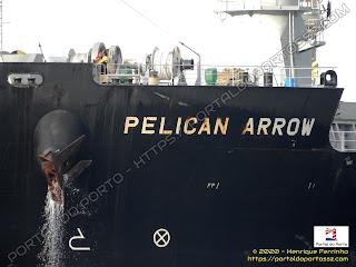 Pelican Arrow
