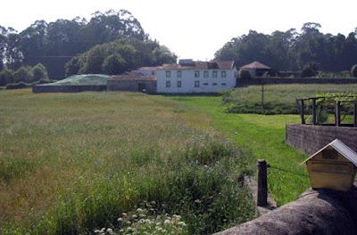 Terreno no campo com a Casa Mindela ao fundo