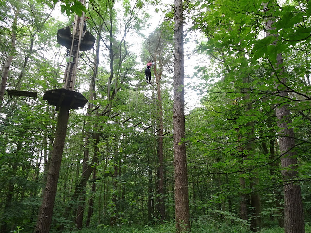 very high on a high rope at go ape matfen northumberland review