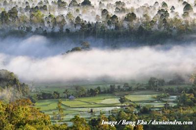 Males Megawe - Negeri di Atas Awan Bukit Bawang Bakung