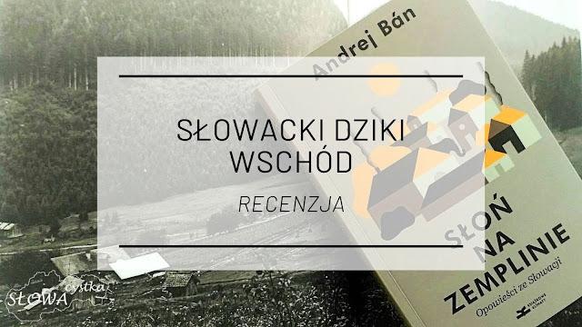 """Słowacki dziki wschód - """"Słoń na Zemplinie"""" Andreja Bána [recenzja]"""