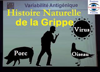 Histoire Naturelle Grippe aviaire porcine espagnole Traitement Anti-virus
