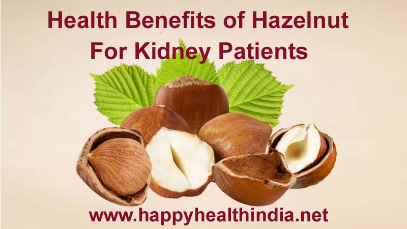 Happy Health India Health Benefits Of Hazelnut For Kidney Patients Happy Health India