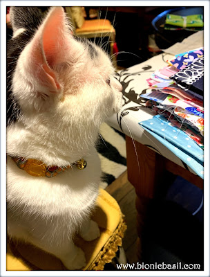 Basil's Catmas Stocking - Crafting with Cats ©BionicBasil® Smooch Craft Room Snoopervisor