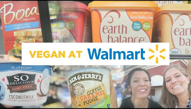 vegan ice cream brands at walmart
