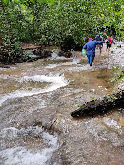 must visit attractions in Chiapas la selva lacandona