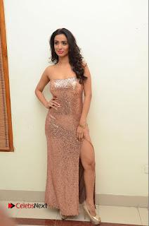Actress Heena Panchal Pictures in Long Dress at Thikka Audio Launch  0181.JPG