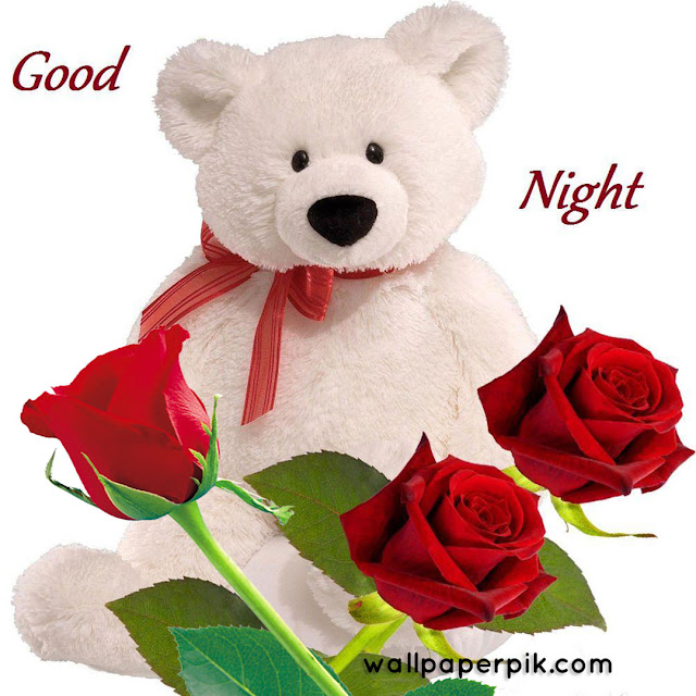 teddy  good night images