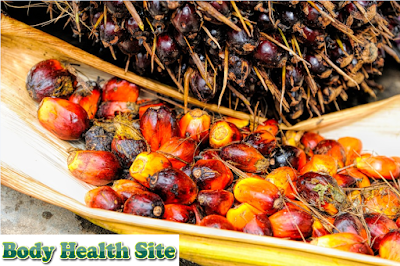 Know the Strengths and Weaknesses of Palm Oil