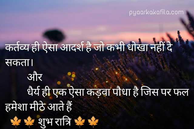 Good Night Shayari in Hindi   शुभ रात्रि हिंदी शायरी