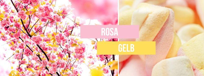 Rosa-und-Gelb-kombinieren