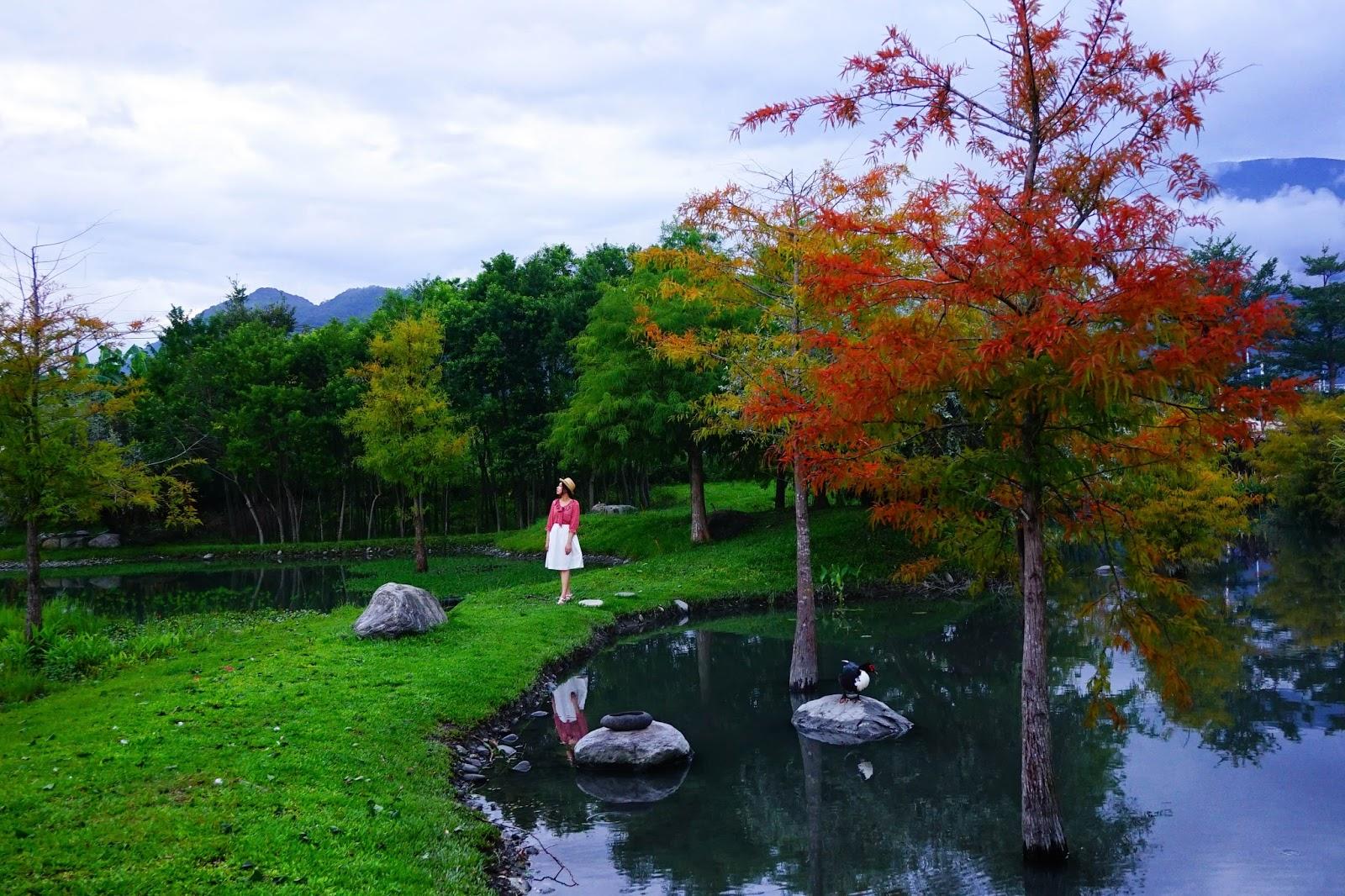 beautyanxiety.com-beautyanxiety.com-cultural-park-forest-DSC08893.jpg