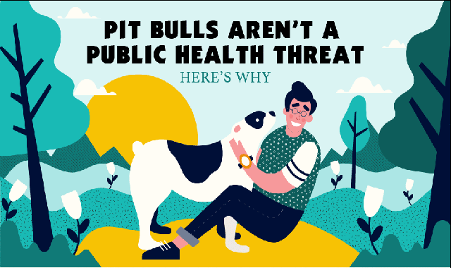 Pit Bulls Aren't a Public Health Threat. Here's Why #infographic