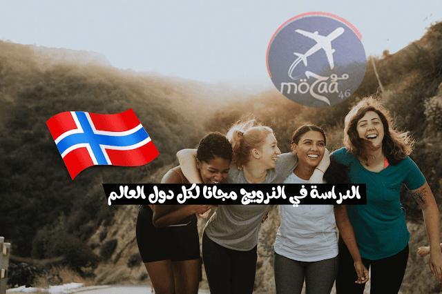الدراسة في النرويج مجانا لكل دول العالم – كيف تدرس في النرويج