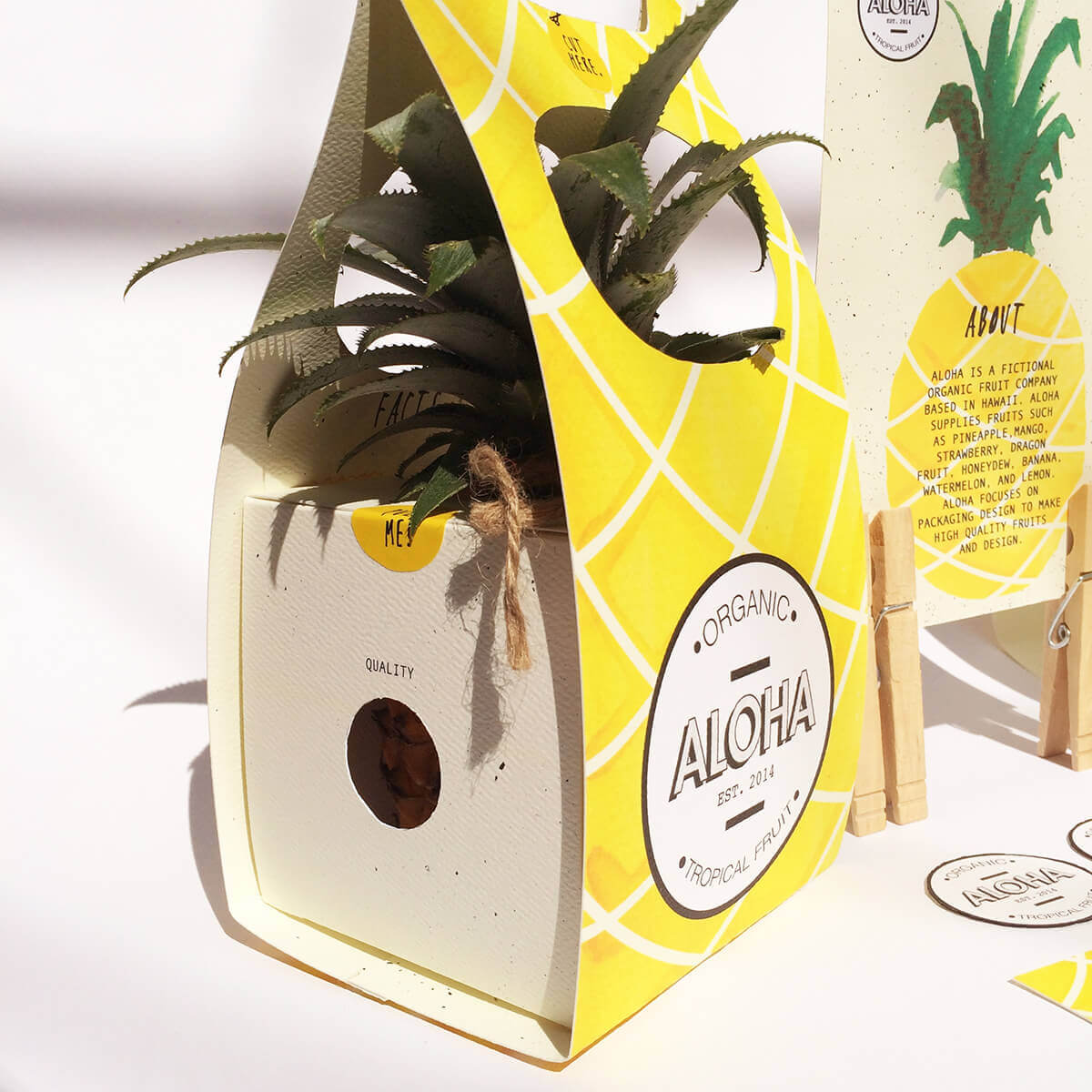 Packaging Ninette Saraswati ALOHA