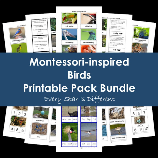 Montessori-inspired Birds Printable Pack Bundle