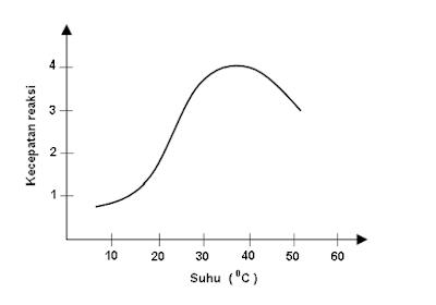 grafik hubungan antara aktivitas enzim katalase dan suhu