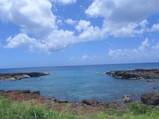 shark cove praia havai