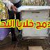 طريقة دمج خلايا النحل