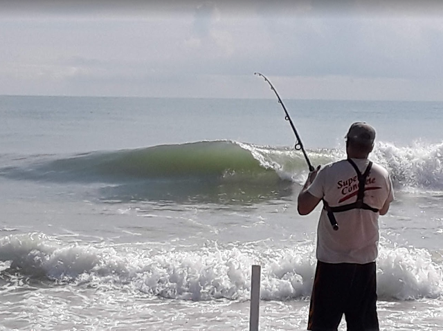 Florida East Coast Surf Fishing Canaveral National Seashore Playalinda Beach Wallace Haile