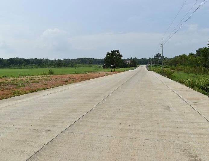 Alicia-Malangas Road project