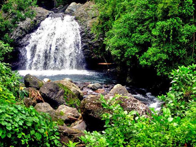 Tourist Attractions In Jamaica Most Beautiful Places In