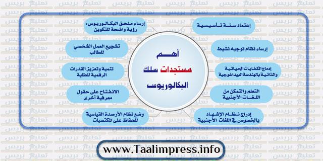 تعرف على الباكالوريوس النظام البيداغوجي الجديد للإجازة بالجامعات المغربية