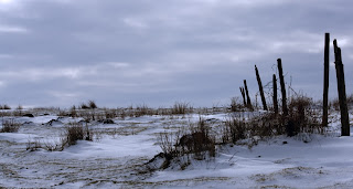 tanah bersalju