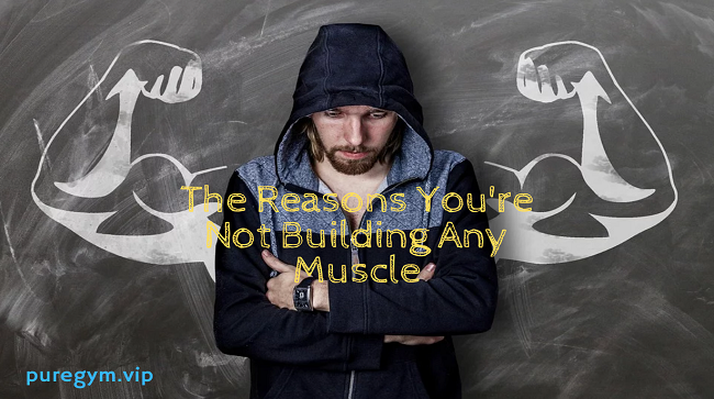 The Reasons You're Not Building Any Muscle | Beginners Mistakes