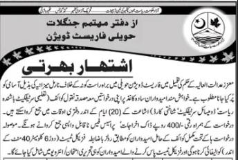 Forest Jobs in AJK 2021  Govt Jobs in Azad Kashmir