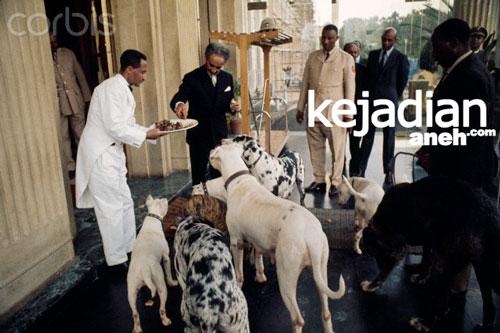 Kaisar Haile Selassie Di Ethiopia Persahabatan Raja Muslim Dengan Anjing
