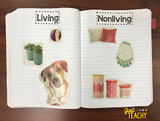 living-and-nonliving-journal-sort